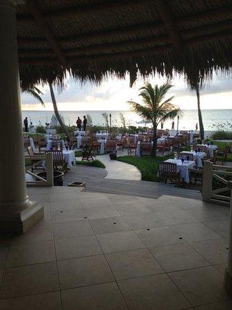 Infiniti Restaurant & Raw Bar: restaurant