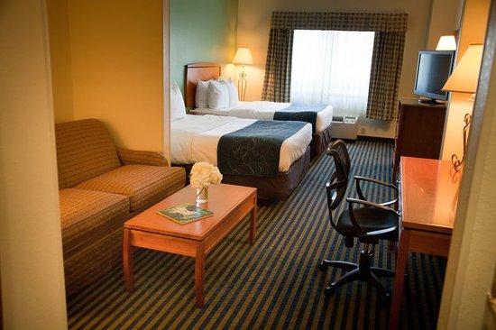 Comfort Suites Leesburg: Queen Studio Suite