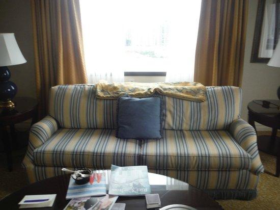 The Ritz-Carlton, Pentagon City: Example of Furnishings