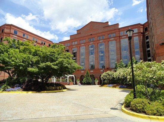 The Hotel at Auburn University: Вход в отель