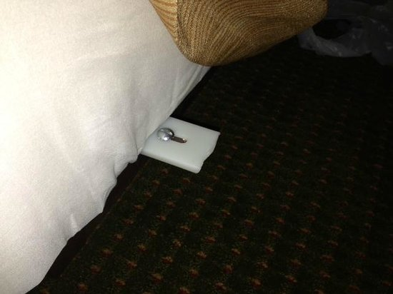 Holiday Inn Austin Conference Center: Bed hazard.