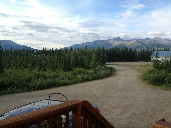 Alaskan Spruce Cabins: View from the balcony looking right