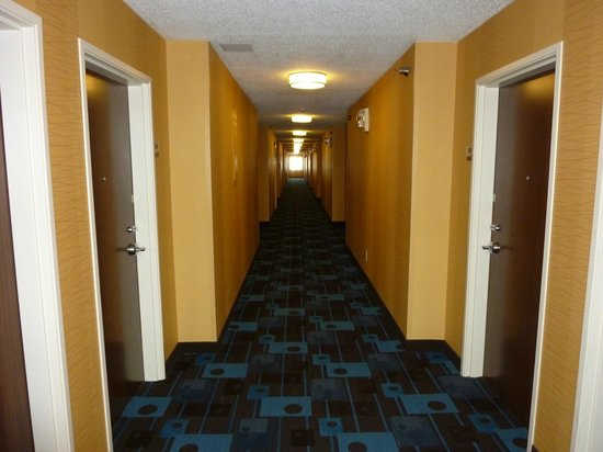 Fairfield Inn & Suites Holland : Hall looking towards elevator area