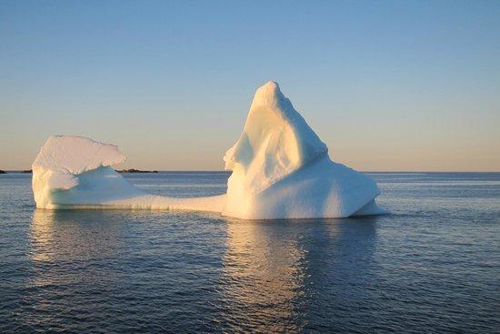 Kelsie's Inn - B & B: Iceberg taken from one of our local boat tours