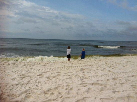 Best Western Ft. Walton Beachfront: Playing on the beach.