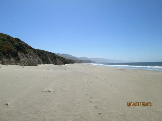 Sculptured Beach: the cliffs