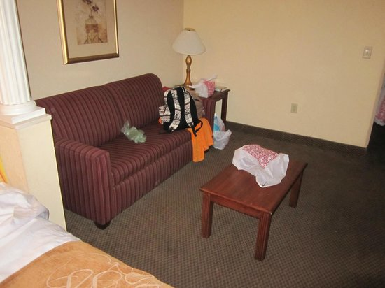 Comfort Suites: Our junk and the couch :)