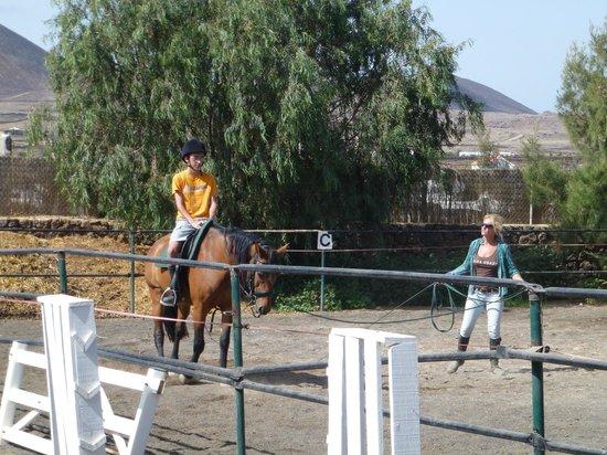 Centro Hípico Los Pinos Verdes: Paul, riding lesson 3