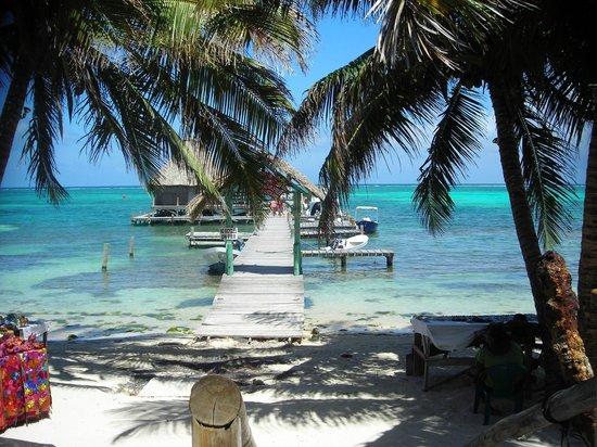 Rockin' New Year's Eve in San Pedro, Belize | Ambergris ...  |Fidos San Pedro Belize
