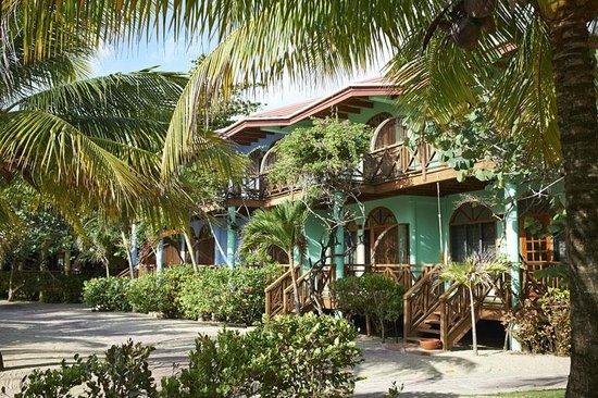 Hamanasi Adventure and Dive Resort: Guest Rooms