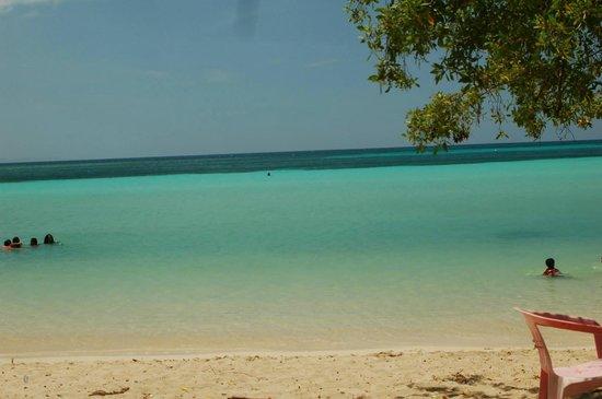 Playa Ensenada Best Beach For Kids Bring A Mask So Man Fish In The
