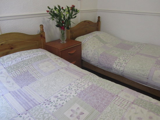 Adelpha Guesthouse: Twin Room