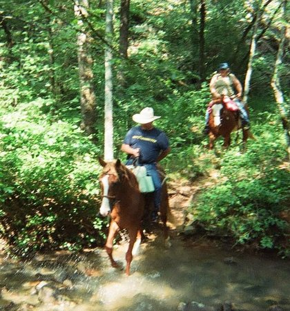 A to Z Guest Ranch: Trail Ride