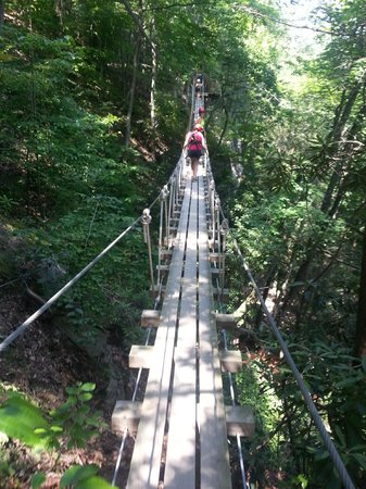 ACE Adventure Resort: Trust Walk Bridge