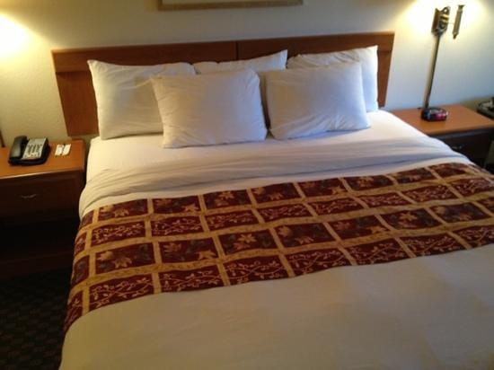 Comfort Inn & Suites: letto