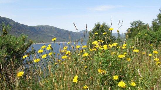 Tigh Na Bruach : Loch Ness