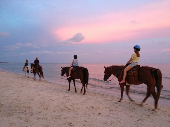 Family ride with two-bit stable at sunset