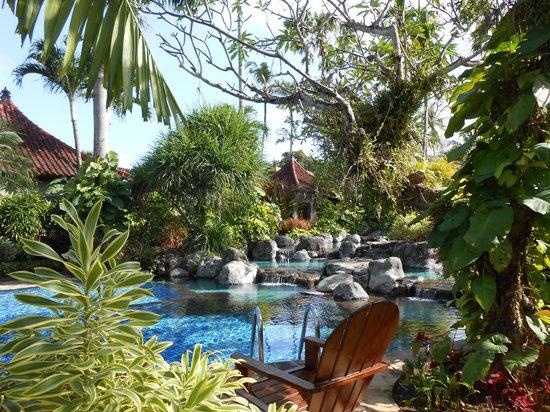 Parigata Villas Resort : La piscine au centre des jardins