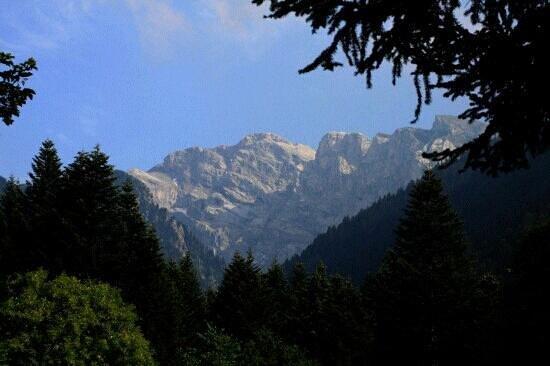 Chiusa di Pesio, Italy: Il Marguareis da Pian delle Gorre