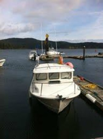 Bluefin Fishing Adventures: Blue Fin Adventures boat