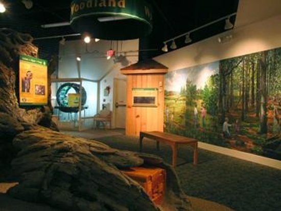 Sandy Creek Nature Center : Exhibit Hall