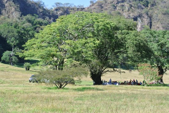 Hacienda de San Antonio: Picnic site in the field with view of the volcano