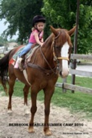 Benbrook Stables: Chuy