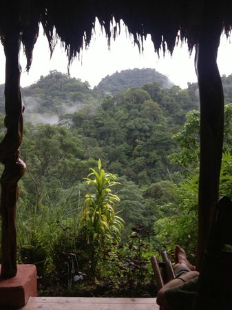 Luna Lodge: View from our room.  The morning air is filled with the sound of howler monkeys.