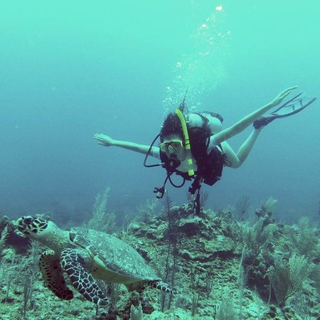 SunBreeze Hotel : My daughter's 1st carribean dive