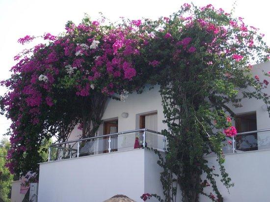 Filis Otel: Balcony
