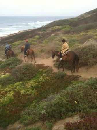 Horseback Riding at Mar Vista Stables