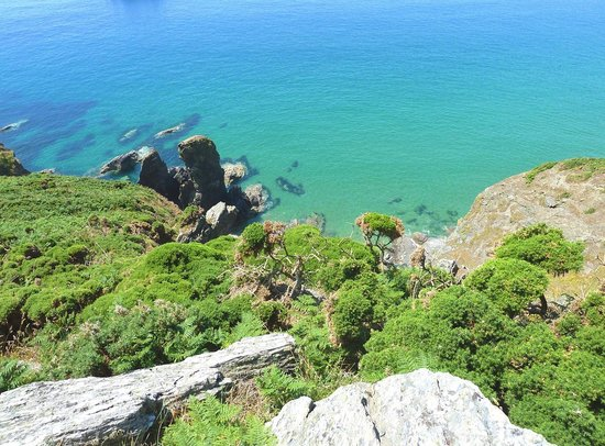 Bolberry Down: Coast path Bolberry to Salcombe