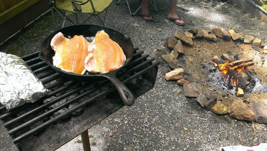 Linville Falls Campground RV Park & Cabins: cought trout fromocal farm pond, so deliouse