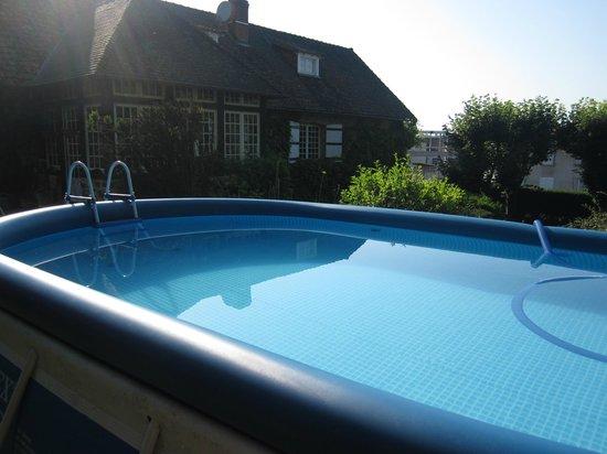 Châteauneuf-la-Forêt, France : La Croix du Reh - summer dip-in pool