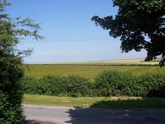 The Old Mill Hotel & Restaurant: view of wolds from room 5