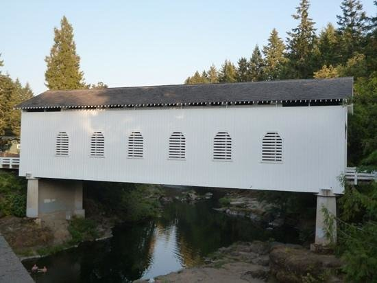 Cottage Grove Covered Bridge Tour Route: The side of the Dorena Bridge.