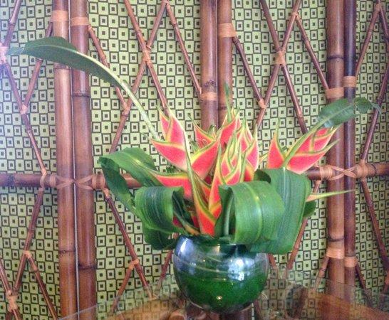 Casa de Piedra: Flowers of the property