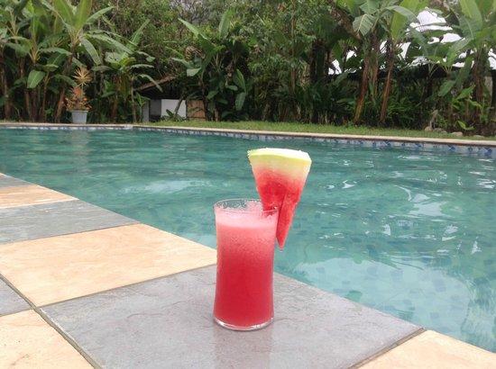 Casa de Piedra: Watermelon Cocktail, so refreshing