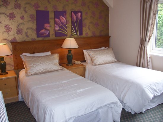 The Old Mill Hotel & Restaurant: twin room