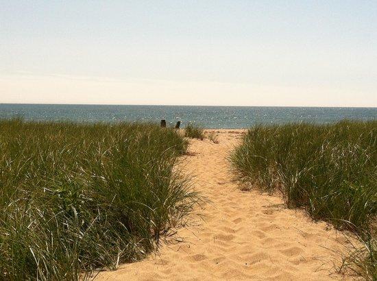 The Summer House Restaurant: Walkway through sand to beach