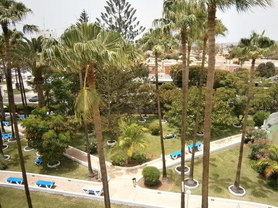 Playa del Sol -  Adults Only: Jardín desde la habitación