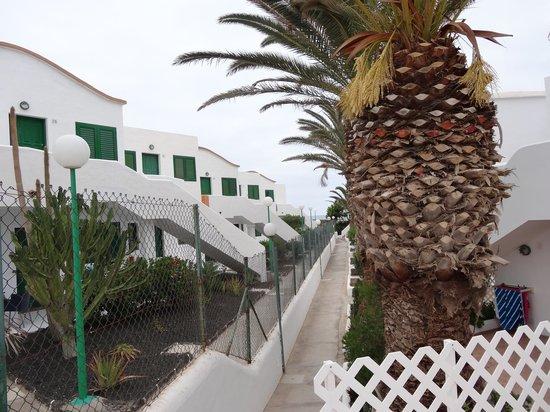 Apartamentos Cotillo Lagos: ca.50-100 m zum Strand