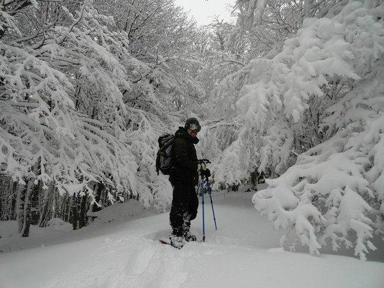 Club Andino Centro de Ski: Realizando un trekking con raquetas por sus senderos.