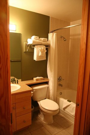 Windtower Lodge & Suites: Washroom