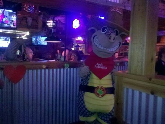 Texas Roadhouse: Andy the Armadillo!!