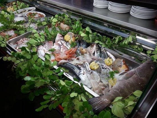 Al Galeone: Esposizione Pesce