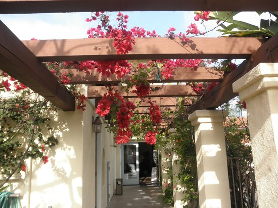 Old Town Inn: Beautiful walkway to pool area
