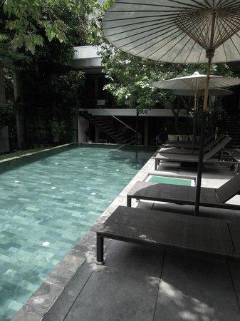 Luxx XL: Pool