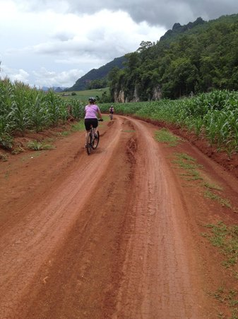 SpiceRoads Cycle Tours - Chiang Mai Day Tours: Winding road...
