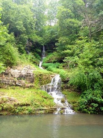 One of dogwood 39 s beautiful waterfalls picture of dogwood for Dogwood canyon
